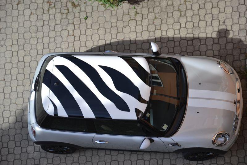 Grafica a Zebra per Tetto R56